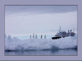 antarctica_25